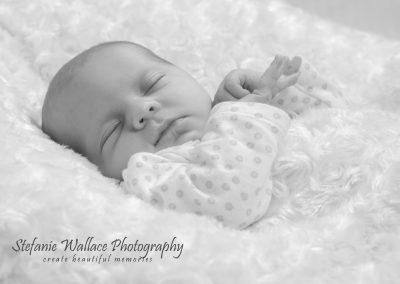 2017 Newborn Baby 31 Stefanie Wallace Photography